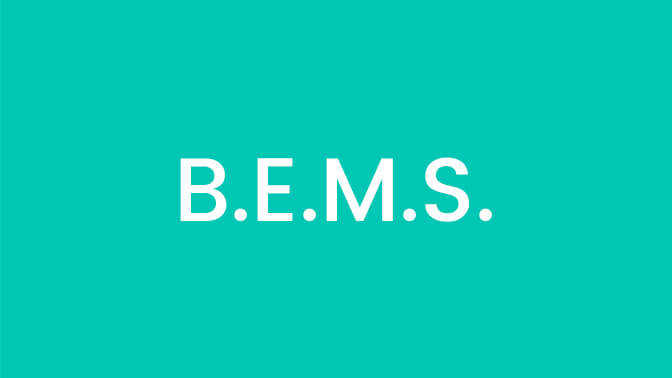 B.E.M.S. <span>(Bachelor of Electrohomeo Medicine and Surgery)</span>